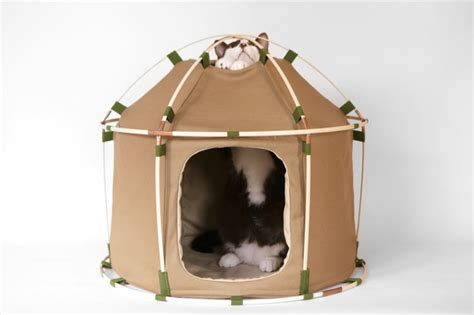 designboom cat furniture 9 coolest cat beds and homes for modern interiors digsdigs