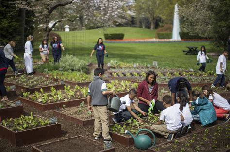 When A School Garden Doesn T Grow Bright Magazine Obama Vegetable Garden