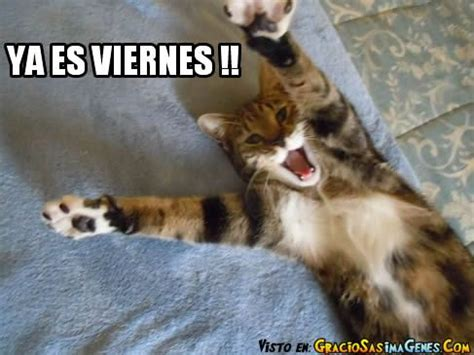 imagenes viernes ya es viernes imagenes ya es viernes love my kds