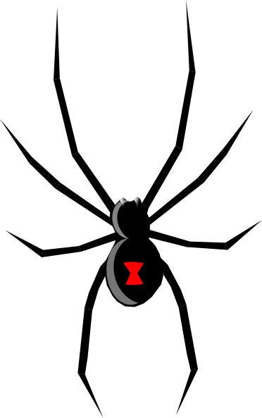 black widow clip art free vector 4vector