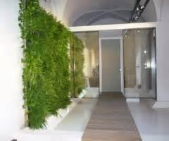 pareti verdi per interni paretiverdi pareti verdi verticali giardini verticali
