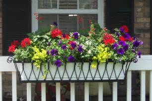 hanging window flower boxes medallion window box or liner hooks lattice
