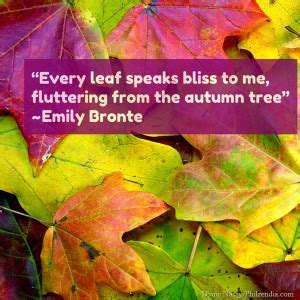 quotes about fall colors quotesgram quotes about fall foliage quotesgram