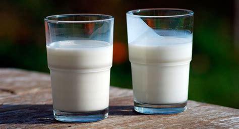 que alimentos contienen acido urico queso para acido urico dieta para reducir acido urico y