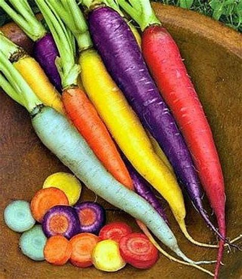 carrot colors heirloom rainbow carrot eye catching images