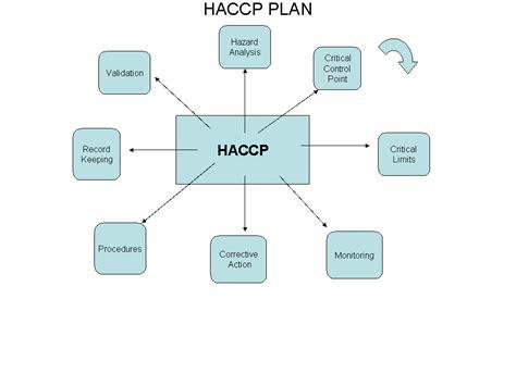 haccp flowchart haccp flow chart pictures