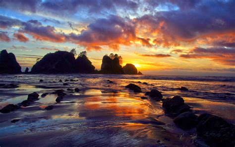colorful ocean wallpaper olympic national park north western images photos by
