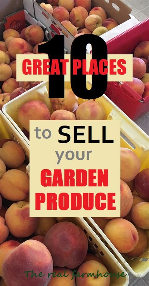 how to sell your for profit you don t need a record company to succeed in selling books how to grow a garden for profit