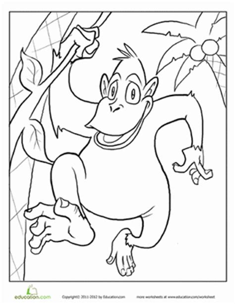 monkey coloring page preschool monkey coloring pages printables education com