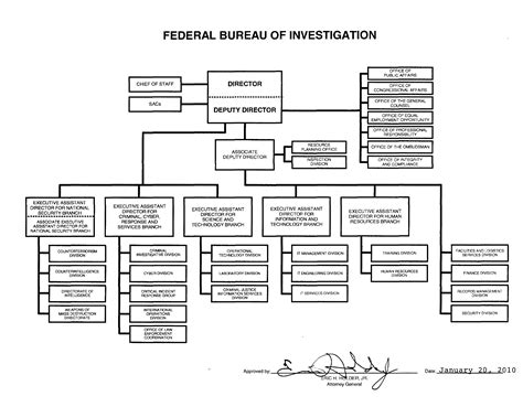 the three barons the organizational chart of the kennedy assassination books fbi organization chart sle free