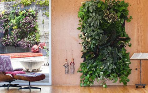 garden anywhere with wally living wall planter 3rings
