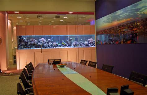 aquarium design centre fish tank maintenance tips london aquarium maintenance