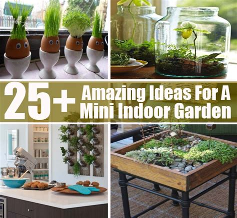 Indoor Garden Ideas Apartment 25 Amazing Ideas For A Mini Indoor Garden Diy Cozy Home