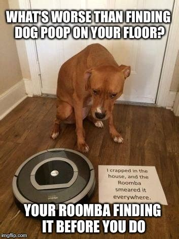 Dog Poop Meme - robot sweepers won t always make housekeeping easier imgflip