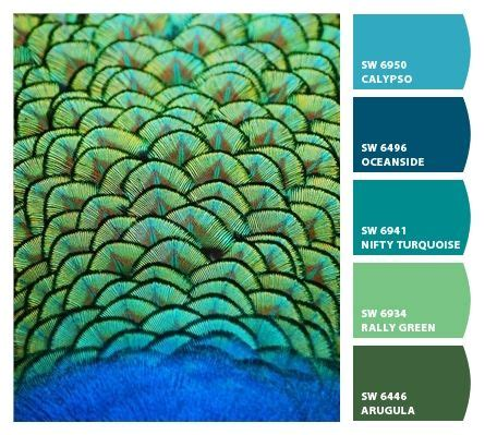1000 ideas about peacock paint colors on sherwin william paint colors and exterior