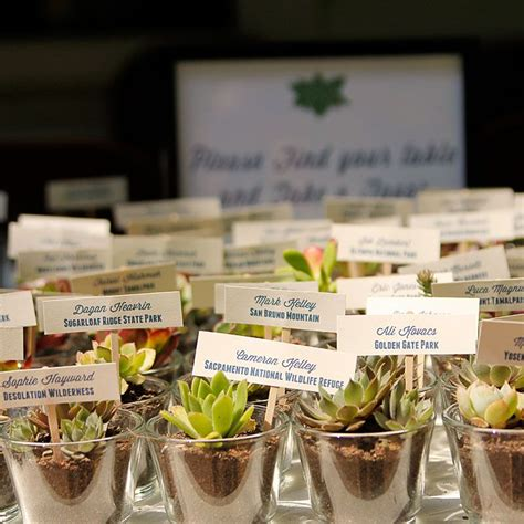 Wedding Gift Plant by Diy Succulent Wedding Favors Favors Decoration And Weddings
