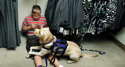 service dogs for autism autism tips for emergency responders service dogs on spirit of autism llc