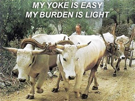 Burden Is Light by X Yoke Is Easy Burden Is Light Pastor Robert Hurst