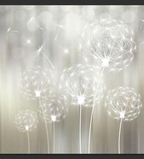 soffioni fiori soffioni nella luce carta da parati