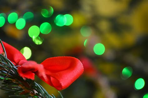 new christmas lights 2017 blossom christmas lights 2017 mouthtoears com