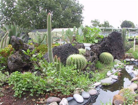 imagenes de jardines botánicos jardines bot 225 nicos en el df naturaleza pura en la ciudad