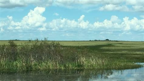 best airboat rides near me 1000 everglades photos miami fl airboat reviews