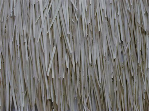 Bamboo Thatch Image Gallery Thatch