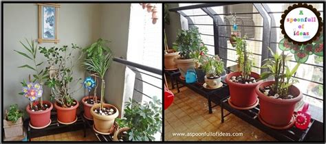 Ten points to consider while planting in the balcony   A