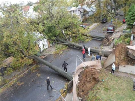 richmond hill tree up amazing pictures and aftermath of hurricane
