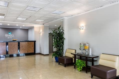 comfort inn suites lax quality inn suites los angeles airport lax 2 инглвуд