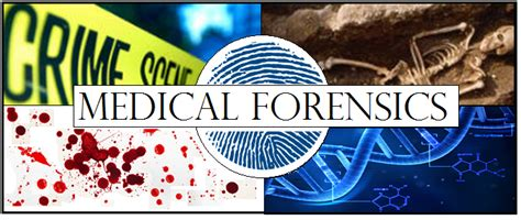 Crime Forensic 4 In 10 shs biotech forensics home syracuse high school