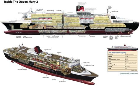 1 Room Cabin Floor Plans by Rms Queen Mary 2 Ship Qm2