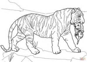 Tiger Cubs Coloring Pages tiger carrying cub coloring page free printable