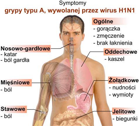 filesymptoms  swine flu plsvg wikimedia commons
