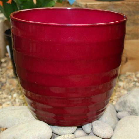 indoor plant pots ivyline ceramic indoor plant pot