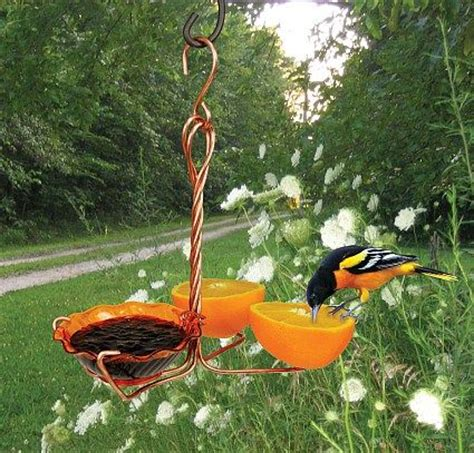 25 best ideas about oriole bird feeders on pinterest