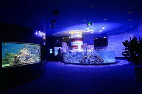 Lu Led Aquarium 2015 metal halide lighting soon to be phased out orphek