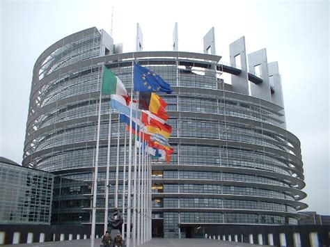strasburgo sede parlamento europeo elezioni parlamento europeo ecco come devono fare i
