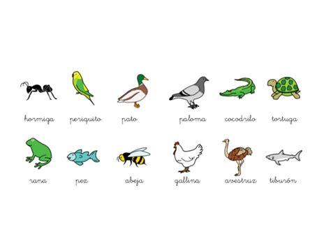imagenes de animales viviparos y oviparos animales oviparos y viviparos