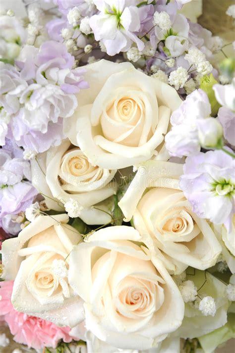 mooie bloemen afbeeldingen boeket van mooie bloemen stock foto afbeelding bestaande