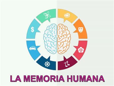 la memoria secreta de 8449333067 la memoria humana