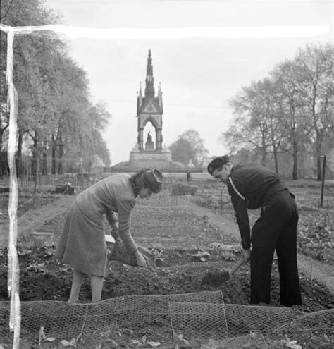 Kensington Garden File Dig For Victory Working On An Allotment In