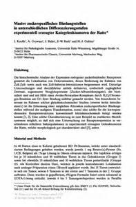 Muster Charakterisierung Muster Zuckerspezifischer Bindungsstellen In Unterschiedlichen Differenzierungsstufen