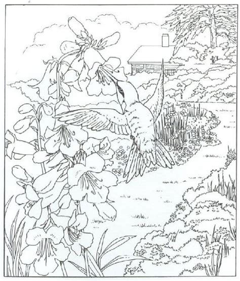 coloring pages of animals and flowers hummingbird pictures to print for free animals coloring