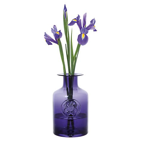 Dartington Flower Vase buy dartington anemone bottle vase amethyst lewis