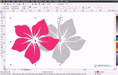 youtube tutorial corel draw x4 coreldraw x4 tutorial pl wektorowy hibiskus część 1