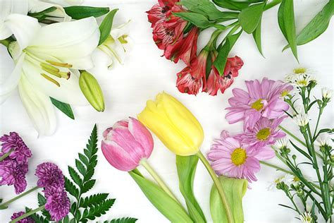 days flowers mother s day flower care guide ftd