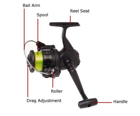 fishing rod parts diagram how to cast a fishing rod fishing for beginners
