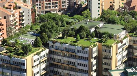 green roofs coming   city   national apartment