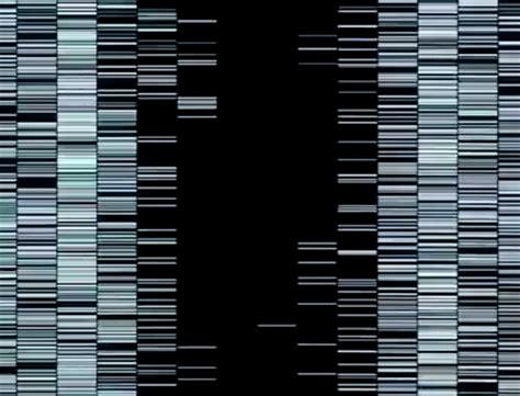 test pattern ryoji ikeda ryoji ikeda at hek house of electronic arts basel art